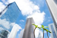 事業家(法人、個人事業主)向けのビジネス関連業務について